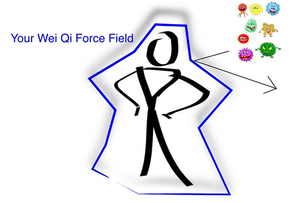 diagram-of-wei-qi-forcefield